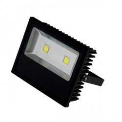 Projector LED-Cob 100w IP65 6500ºk